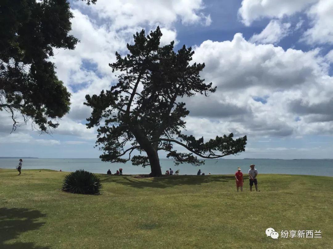 2019年暑假新西兰两周亲子研学旅行