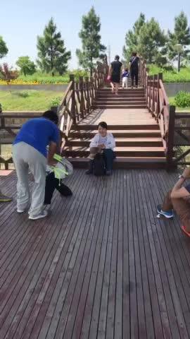 流光溢彩青西园,姹紫嫣红蔡浜村 ——青西郊野湿地公园、蔡浜村徒步纪实(三) - ruoruo1080 - ruoruo1080的博客